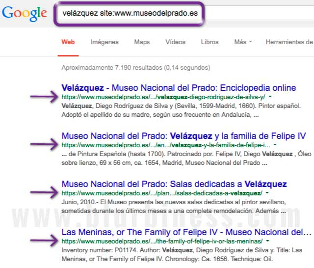 Google buscar con site