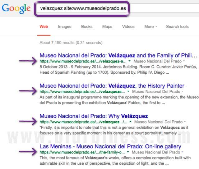 Google search site