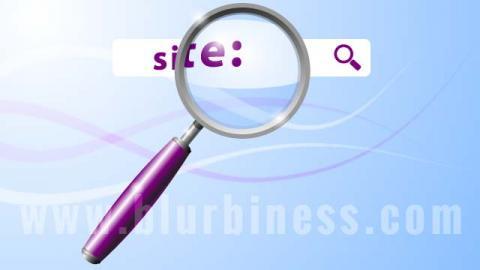 Google search inside a website