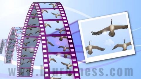 Sacar una foto de un vídeo
